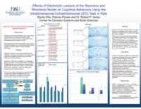 Effects of Electrolytic Lesions of the Reuniens and Rhomboid Nuclei on cognitive behaviors  using the Intradimensional Extradimensional (IED) task in Rats