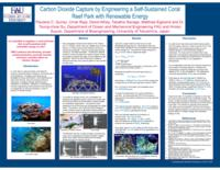 Carbon dioxide capture by engineering a self-sustained coral reef park with renewable energy
