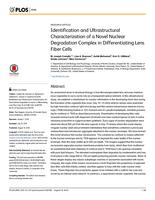 Identification and Ultrastructural Characterization of a Novel Nuclear Degradation Complex in Differentiating Lens Fiber Cells