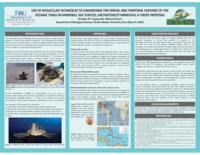 Use Of Molecular Techniques To Understand The Spatial And Temporal Features Of The Oceanic Stage In Hawksbill Sea Turtles, Eretmochelys Imbricata; A Thesis Proposal