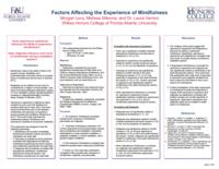 Factors affecting the experience of mindfulness