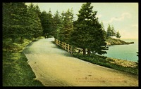 Point Pleasant Park, Halifax , N.S., 8/17/1908