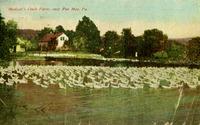 Mentzer Duck Farm near Pen Mar, Pa.