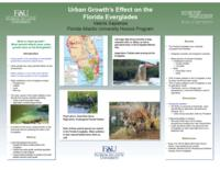 Urban Growth's Effect on the Florida Everglades