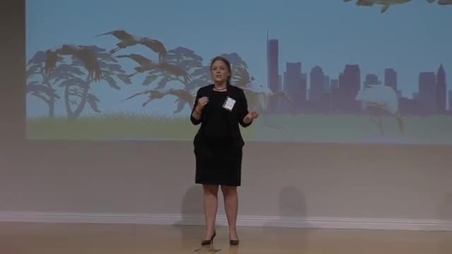 FAU 2016 3MT® Three Minute Thesis Championship - Betsy Evans