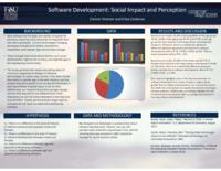 Software Engineering: Social Impact and Perception