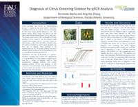 Diagnosis of Citrus Greening Disease by qPCR Analysis