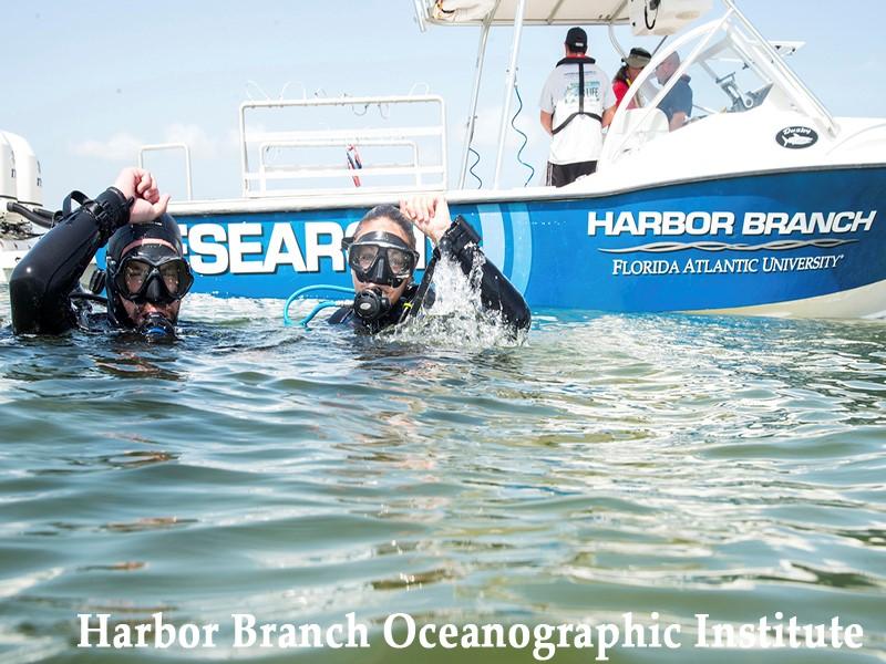 Harbor Branch Oceanographic Institute